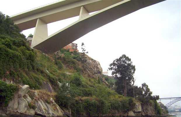 Ponte Infante D. Henrique di Oporto