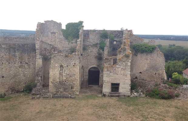 Castillo de Billy