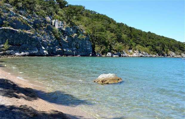 Playa Pesja