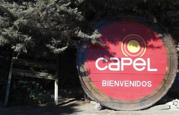 Fabrica Pisco Capel