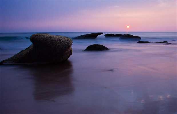Praias de Roche