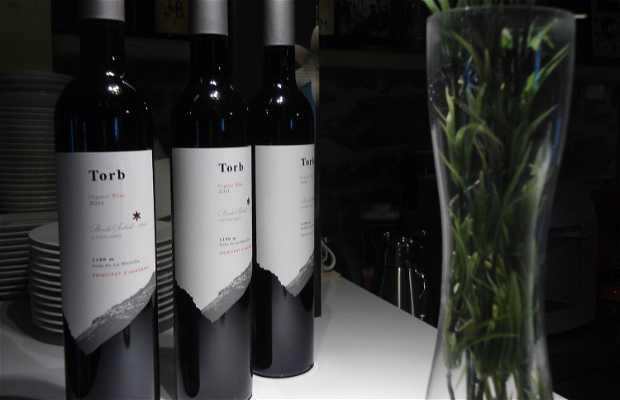 Les vignes Borda Sabaté