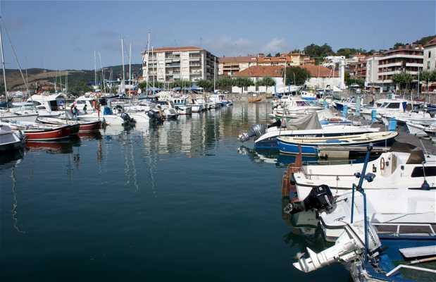 Puerto de la Gallarda