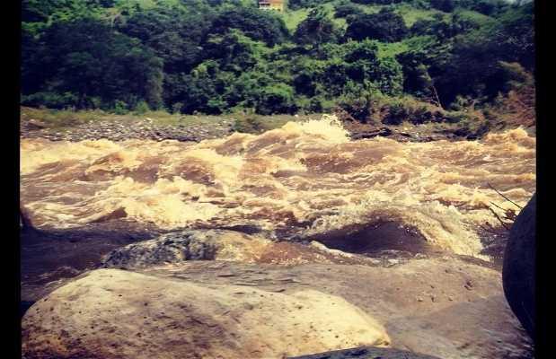 Carrizal (Río Los Pescados)