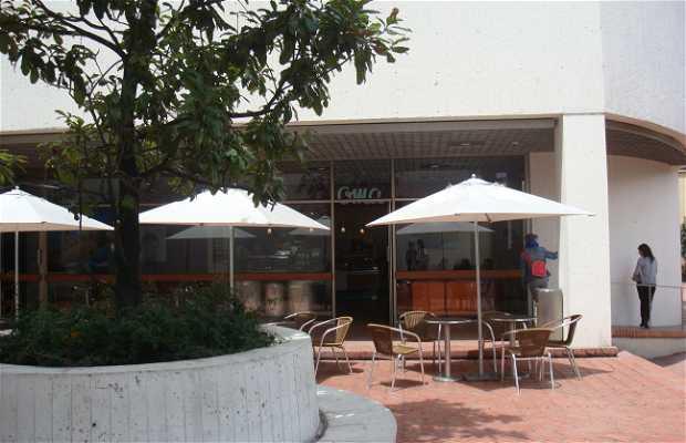 Universidad la Tadeo y su museo