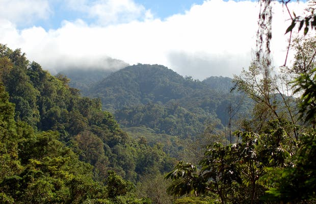 Ruta de Los Quetzales