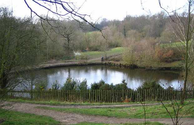 Parc de Hampstead Heath
