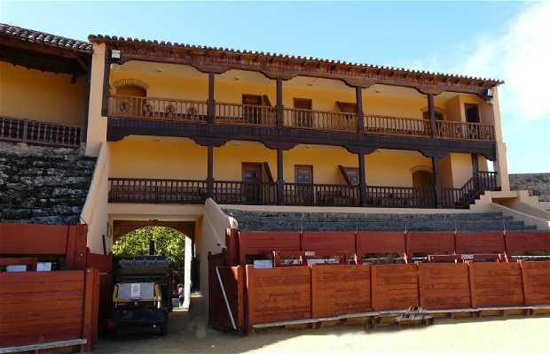 "Plaza de Toros ""El Castañar"""