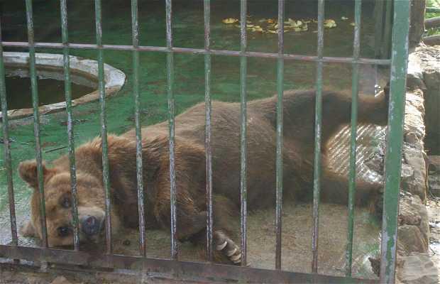 Zoologico de Salto