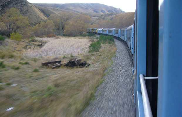 Trem TranzAlpine