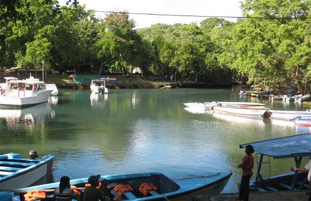 La Laguna Grigrí