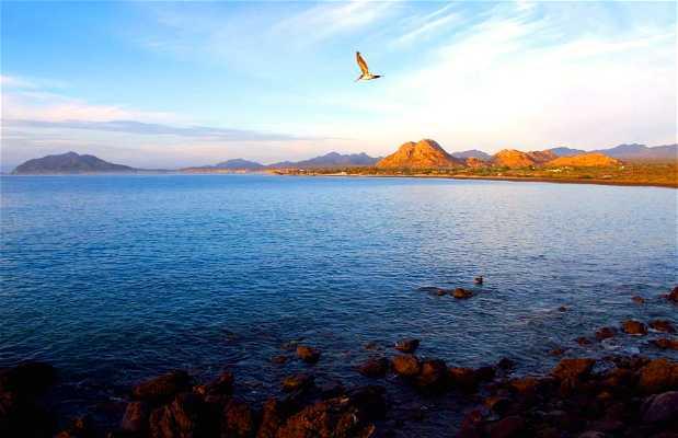 Parque nacional Cabo Pulmo