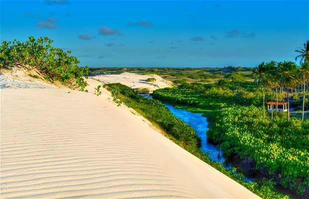 Playa Zumbi