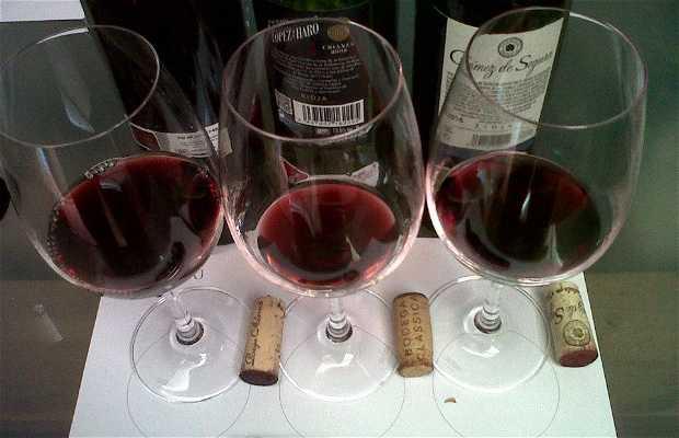JUNGUITU - Museo del Vino del Portal de La Rioja
