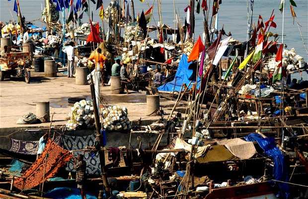 Diu, a fishing village