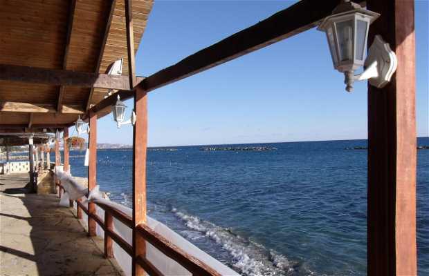 Restaurante y Marisquería