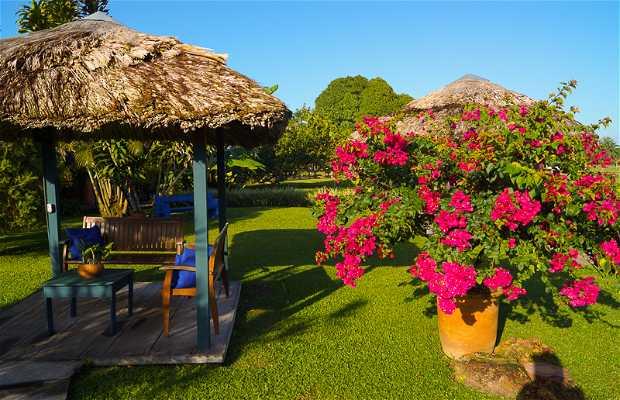 O Celeiro - Castanhal Pará Brasil