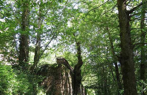 Le Chemin des moines