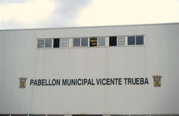 Pabellon Municipal Vicente Trueba