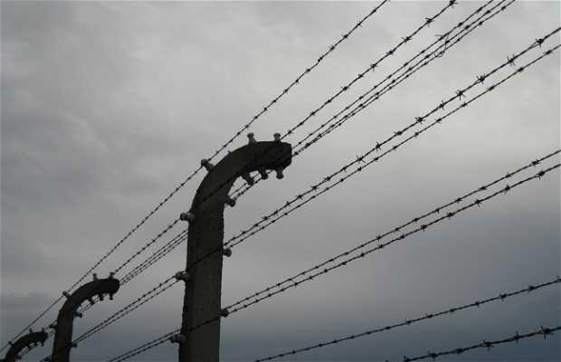 Alambradas de Birkenau