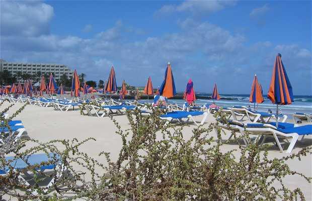 Spiaggia e dune di Corralejo