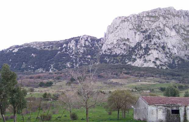 Alpe Cucco