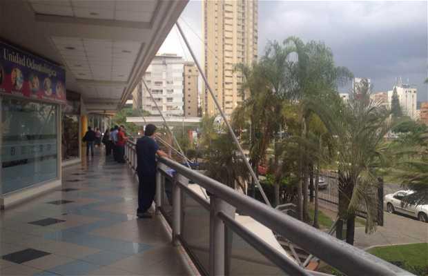 Centro Comercial Paseo las Delicias II