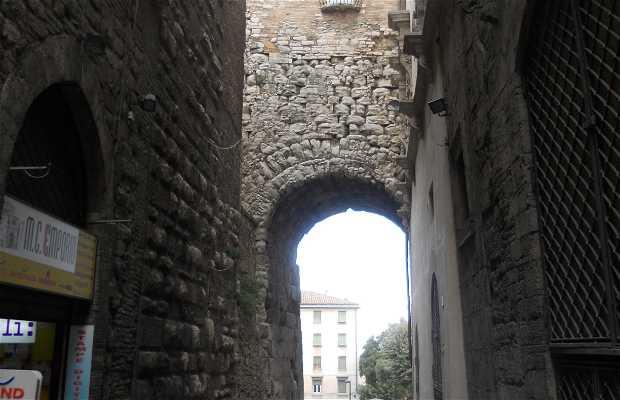 Via Ulisse Rocchi