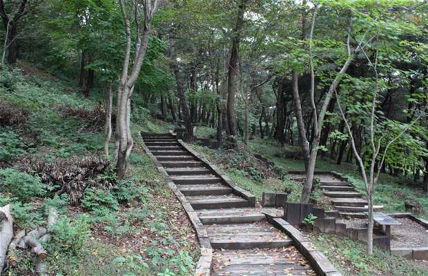 Kim Yu Sin Tomb