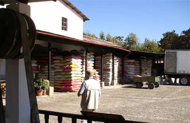 Casa del café Azotea