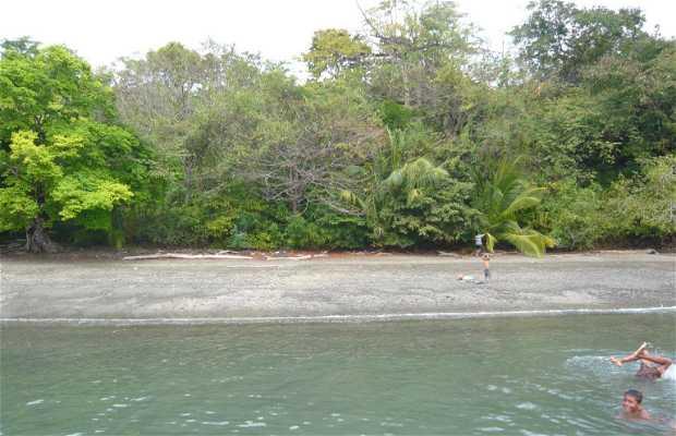 Isla Gobernadora