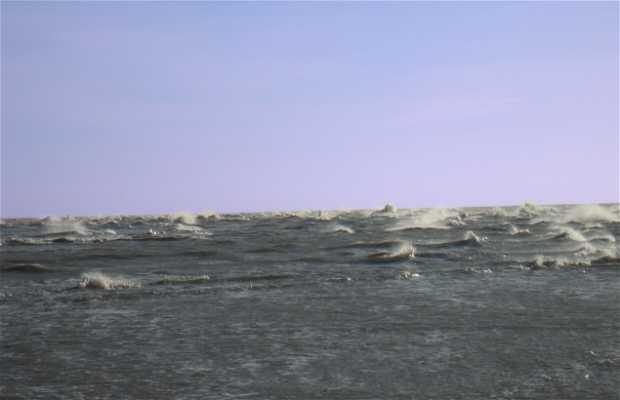 Playa de Grenen