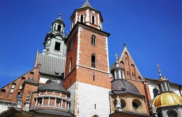 Cattedrale di Wawel (Katedra Wawelska)