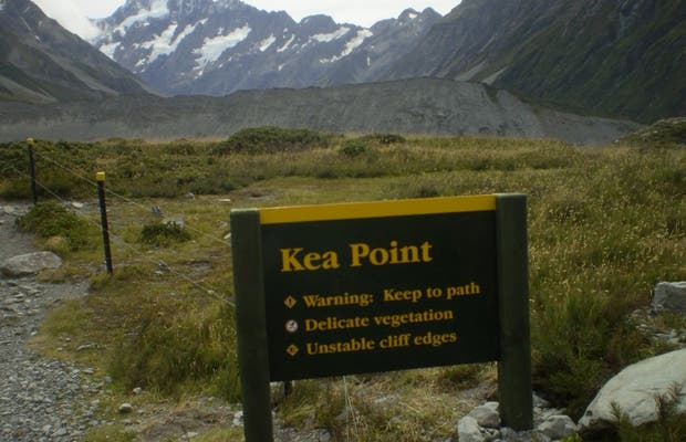 Kea Point Walk