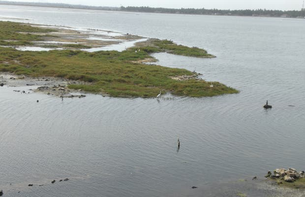 Delta de Arugam