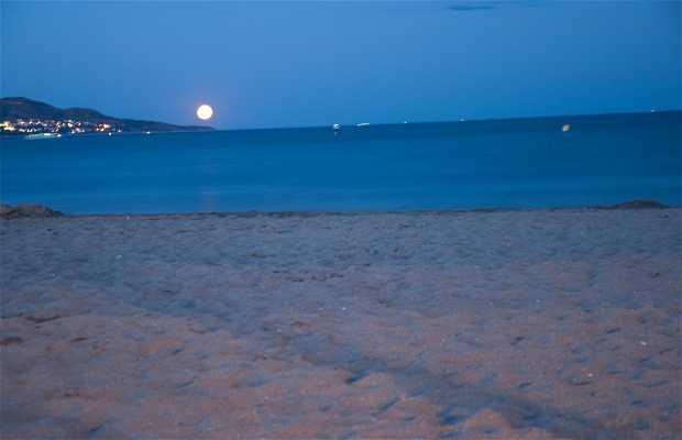 Playa de Castelló d'Empuries