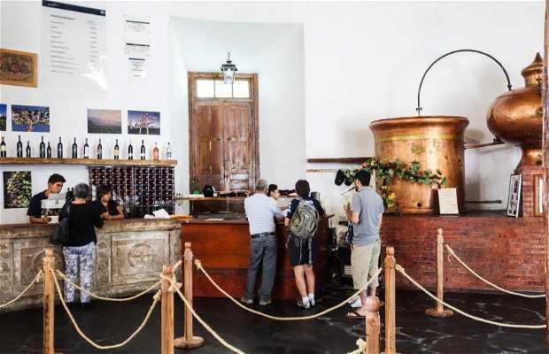 Tienda de Vinos de Casa Madero
