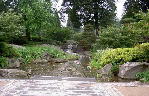 Old Botanical Gardens - Alter Botanischer Garten
