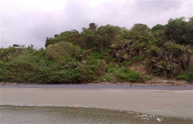 Playa Negra Monpiche