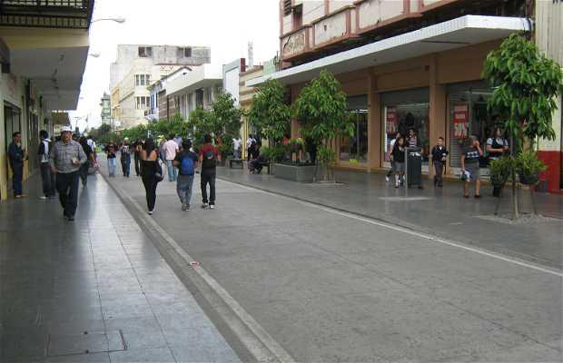 Sexta Avenida