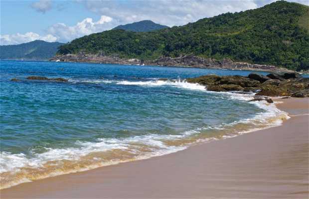 Praia Toque Toque Pequeno