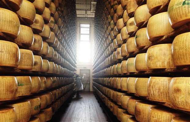 Productor de queso Parmigiano Reggiano