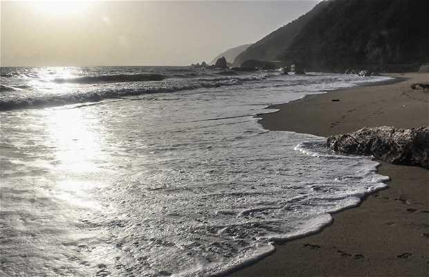 Playa Punta Care
