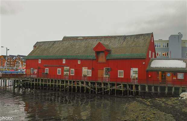 Tromso Museo Polar