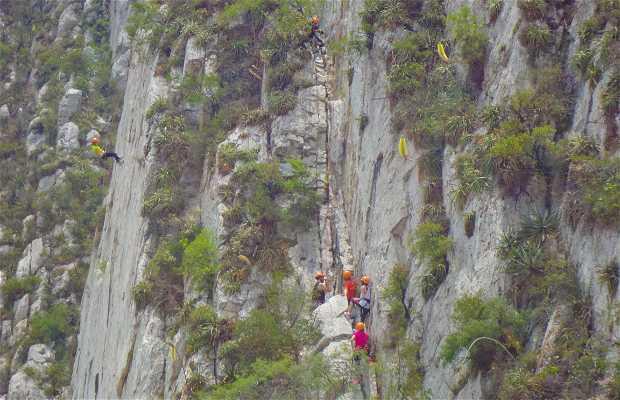 Pared para escalar UDEM