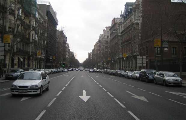 Rua Ortega y Gasset, Madrid