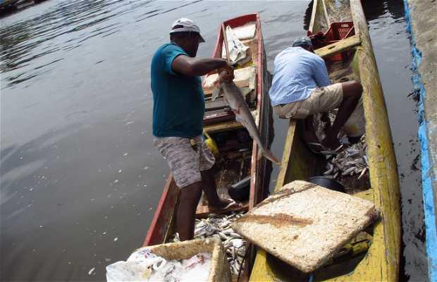 Mercado de peixes de Valença