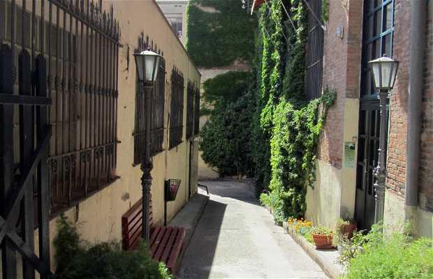 Portal Nou Street