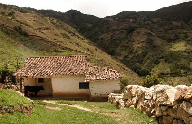 Andes Venezolanos