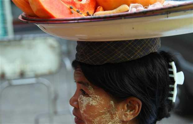 Cabezas de Birmanes